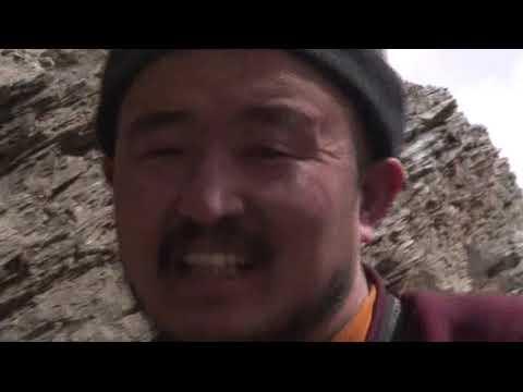 My Himalayan Vulture