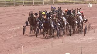 Vidéo de la course PMU PRIX DE LA PORTE DES LILAS