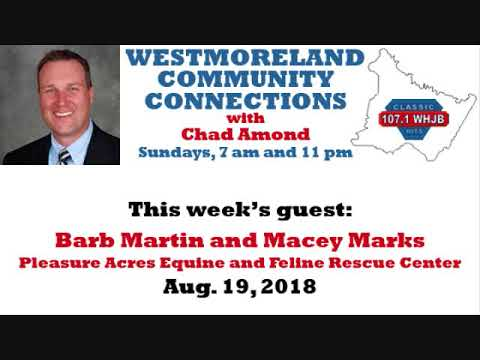 Westmoreland Community Connections: Aug. 19, 2018