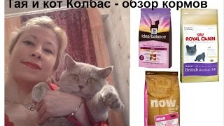 Обзор кормов для кошек NOW Natural holistic, Royal Canin, Hills Ideal Balance(, 2015-07-29T02:26:42.000Z)
