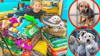 Buying My Puppy EVERYTHING IN THE PET STORE u0026 DONATING it!!