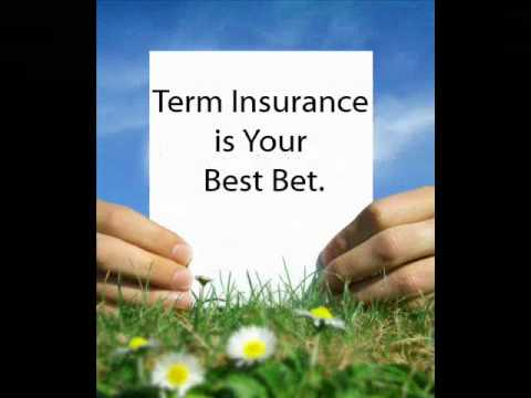 Life Insurance 101: Term Life Insurance vs Whole Life Insurance (Part 1)