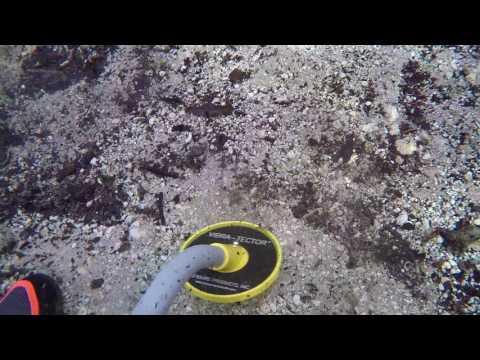 Metal Detecting a Natural Spring