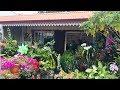Voir A Vendre : Maison F5 de 120 m² à La Rivière, Ile de La Réunion 974 - 209 650 € HAI