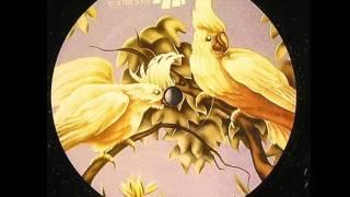 Natural Rhythm  -  Eclectic Dub