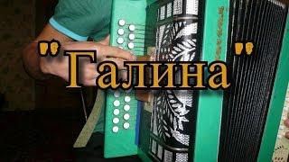 Галина на гармони (разбор песни).