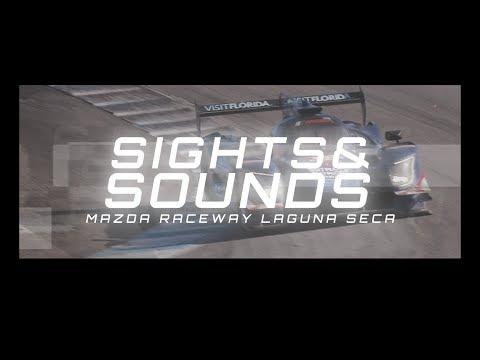 Sights and Sounds: 2017 AMERICA