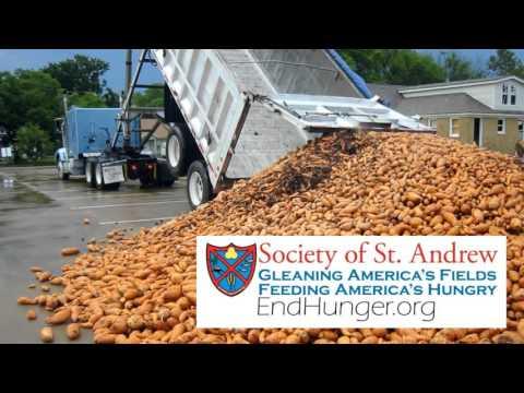 Hunger Relief website