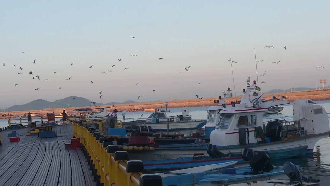 서산 삼길포 항에도 수산시장이 생기고 어촌 마리나역 도 생기고