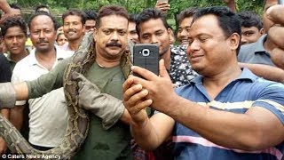 Python tries to kill Indian forest officer as he poses for photo with it