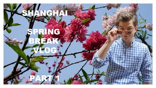 SHANGHAI SPRING BREAK (HOTEL + FAKE MARKET) PART 1
