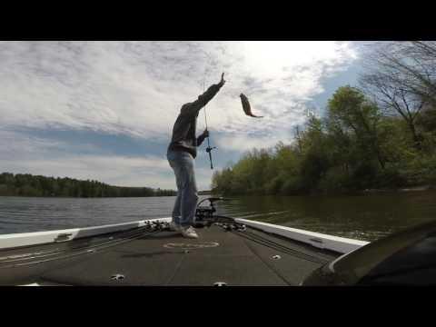 Sight Fishing - Beltzville State Park