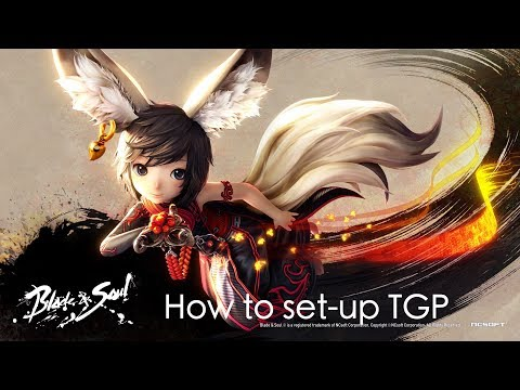 [CN] Blade and Soul how to set up TGP