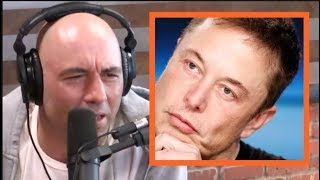 Joe Rogan - Elon Musk is an Animal!