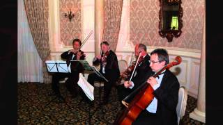 "NYC based Art-Strings Quartet tribute to Adele ""Rolling in the Deep"" Thumbnail"