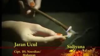 Jaran Ucul_Suliana