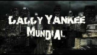 Daddy Yankee - Grito Mundial (Www.FlowHoT.Net)