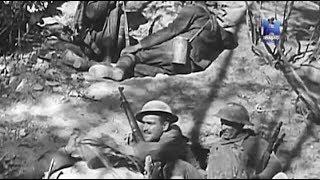 """""""Первая мировая война в цифрах"""", эпизоды 2 - 4."""