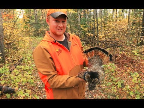 Grouse Hunting 2018