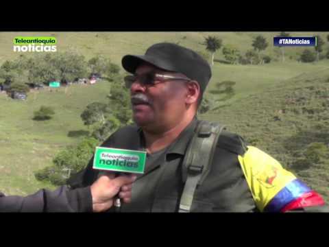 Teleantioquia Noticias visitó el campamento del Frente 18 de las Farc en Ituango