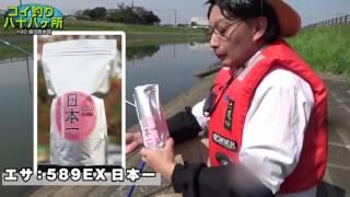 コイ釣り八十八ヶ所 #30:千葉県・坂川放水路