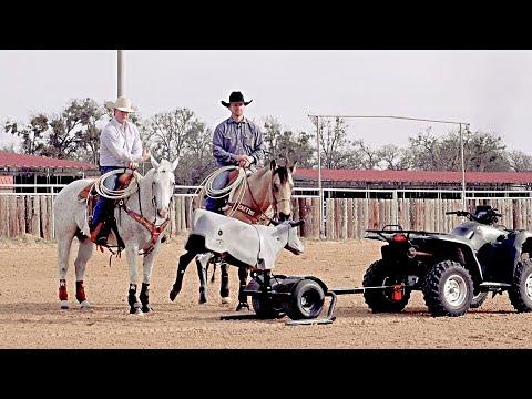 Heel-O-Matic On Chris Cox Horsemanship