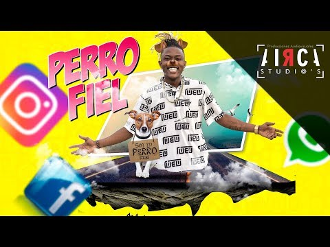 El Perro Fiel - Giblack |Audio GB2018
