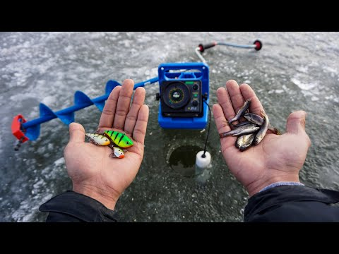 LIVE Bait Vs ARTIFICIAL Lure Ice Fishing Challenge! (Which Is Better?)
