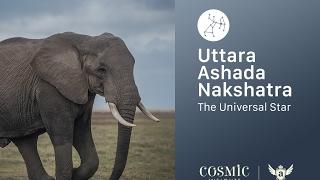 Video Uttara Ashada Nakshatra:  Stellar Mind Programming Technique download MP3, 3GP, MP4, WEBM, AVI, FLV Juli 2017