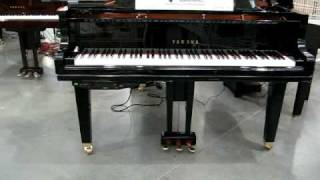 Baby Grand Piano @ Costco