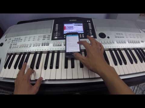 Hướng Dẫn Tự Đàn Organ Duyên Phận Dễ Nhất Esy Tutorial - Nguyễn Kiên Music