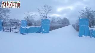 館ヶ森アーク牧場 に行こう 冬 一関市花泉町方面からのアクセス 道案内 岩手県 観光地 観光牧場