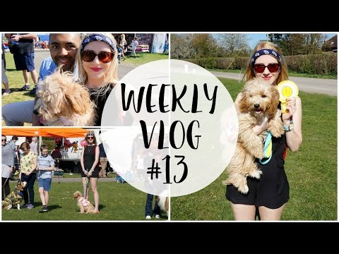 WEEKLY VLOG #13 | Real Life TY Beanie Baby & Dog Show