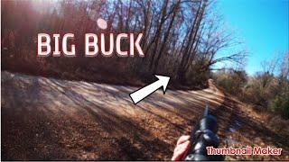 DEER DOG DRIVES!!! (HUGE BUCK RUNS RIGHT UP ON ME!)