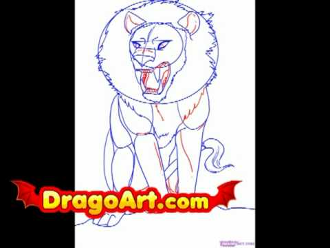 How To Draw An Anime Lion Step By Step Youtube