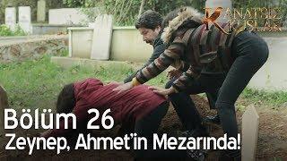 Kanatsız Kuşlar 26. Bölüm - Zeynep, Ahmet'in mezarında!