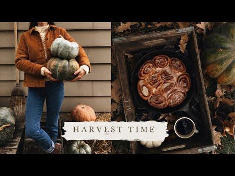 Welcoming Autumn | Vlog