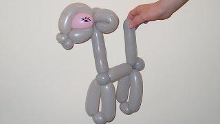 Тело животного из одного шарика