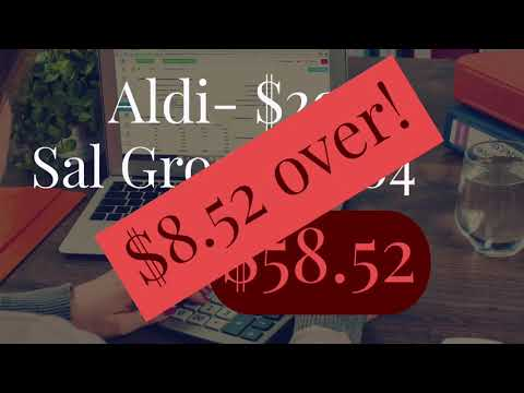 Weekly Grocery Haul || Salvage Store || Aldi