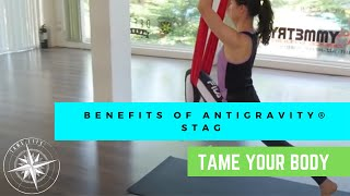 ANTIGRAVITY BENEFITS OF THE POSE - STAG - TAME LIFE