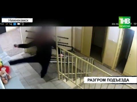 Видео разгрома подъезда: разбитые стёкла и покорёженные почтовые ящики | ТНВ
