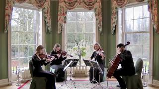 Skyfall (Adele) Wedding String Quartet