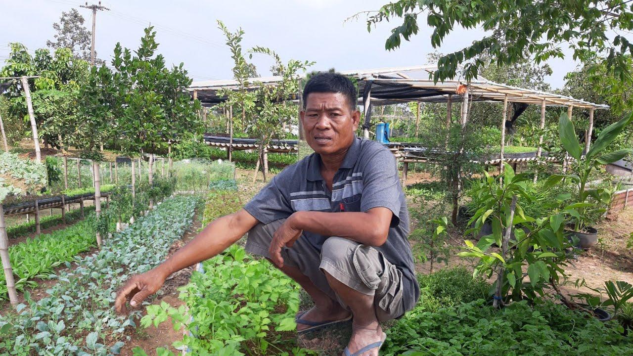 สุดยอดบุคคลต้นแบบ!!ติดเหล้าเมามายหลายสิบปี..มาได้ดีเพราะทำเกษตรผสมผสาน