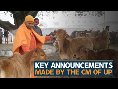 Key decisions Yogi Adityanath took after becoming Chief Minister of Uttar Pradesh