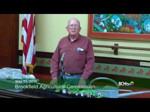 """Brookfield Agricultural Commission on """"Growing Pumpkins"""""""