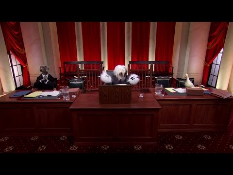 Walden v. Fiore: Oral Argument - November 04, 2013