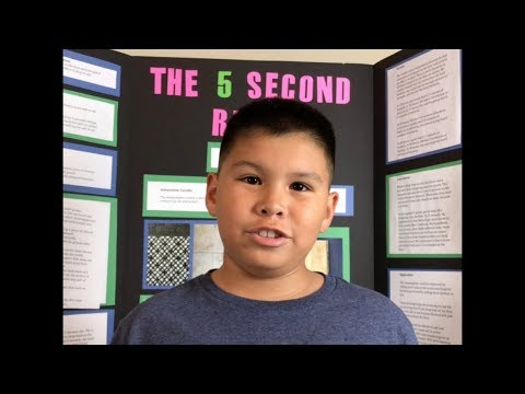 The 5 Second Rule   Science Project