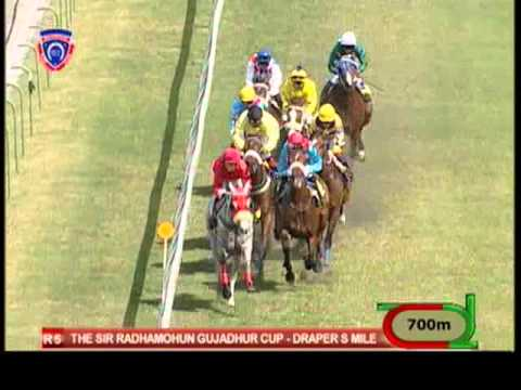 Season 2012 - Meeting 30 - Race 5 - Ashanti Gold - M. Neisiu