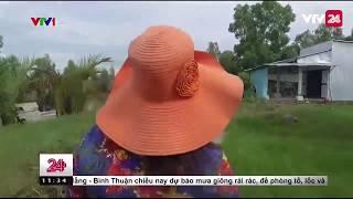 TIÊU ĐIỂM: LY HƯƠNG VÀ NỖI LO THẤT HỌC - Tin Tức VTV24