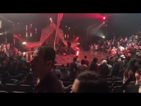 Cirque du Soleil performer falls during performance in Tampa